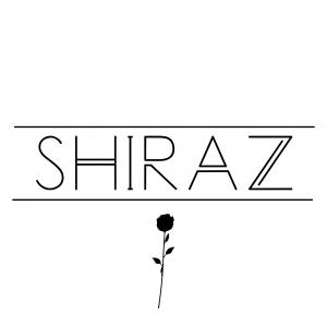SHIRAZ STYLE עמוד תשלום